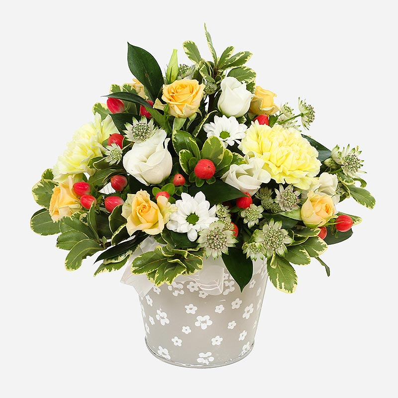 Order A New Day flowers