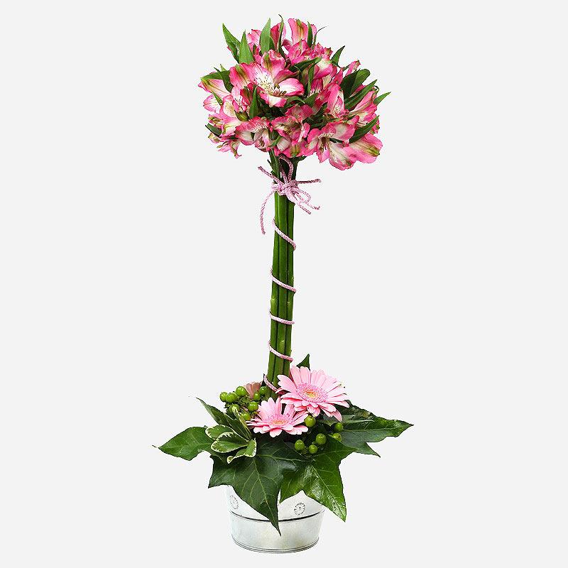 Order Topiary Magic flowers