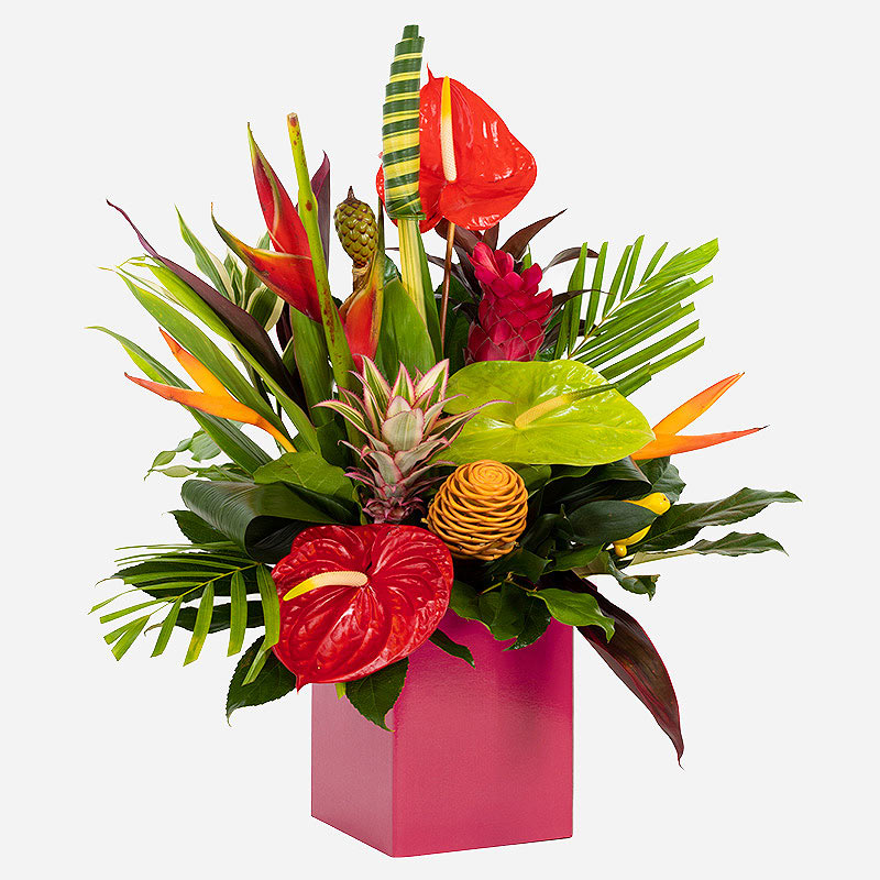 Order Tropical Passion flowers
